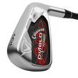 Diablo Forged Irons