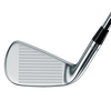 Apex Muscleback Irons - View 2